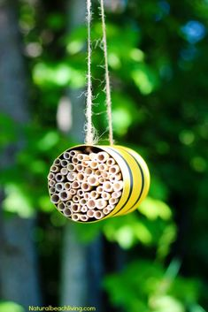 How to Make a Mason Bee Habitat, Perfect Life Cycle of a Bee Activities, Bee Theme, Hands on activit Bee Activities, Nature Activities, Rainforest Activities, Preschool Themes, Montessori Activities, Animal Research For Kids, Honey Bee Life Cycle, Bird Seed Ornaments, Bug Hotel