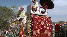 ELEPHANT FESTIVAL   INDIA 2011