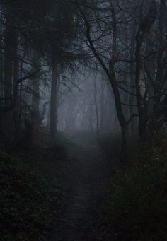 """❁ """"I mostly think about killing myself and sex"""" ❁ ❁ Dark/Gore/Horror/Serial Killers/Nature/Satanism/NSFW ❁ Dark Photography, Landscape Photography, Wedding Photography, Dark Beauty, Nature Wallpaper, Dark Wood, Macabre, Dark Art, Mists"""