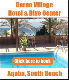 Darna Divers Village - dive resort in Aqaba, South Beach with hotel rooms and restaurant.  http://www.DarnaVillage.com