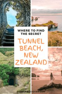 In Dunedin and wondering what to do? Being the wildlife capital of New Zealand there is so much to do here: read on to find out what to do in Dunedin! Capital Of New Zealand, New Zealand Cities, New Zealand Travel, Dunedin New Zealand, Stuff To Do, Things To Do, Lake Tekapo, New Zealand South Island, Moeraki Boulders
