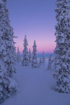 Nordic dreams - Abisko National Park (Sweden) by Reinhard Strickler