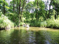 Szlak prowadzi przez 9 jezior Pojezierza Mrągowskiego (j. Wągiel, j. Wierzbowskie, j. Czos, j. Czarne, j. Kot, j. Juno, j. Kiersztanowskie, j. Śpigiel, j. Dejnowa).  www.it.mragowo.pl