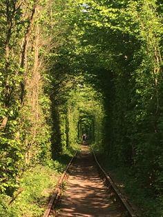 Тунель Кохання / Tunnel of Love in Клевань, Рівненська обл.