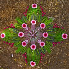 Mandalas criadas com flores por Kathy Klein