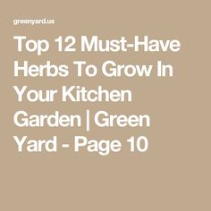 Top 12 Must-Have Herbs To Grow In Your Kitchen Garden   Green Yard - Page 10