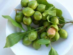 Part Ii More Fruit Of Poisonous Tree >> Guyanese Fruits