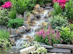 Asian Garden, Love Garden, Plants, Landscapes, Gardens, House, Patio, Plunge Pool, Water