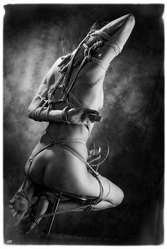 Encordées - Bondage & photographie - Shibari - galerie cordes & noeuds