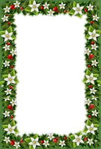 Christmas_Green_PNG_Photo_Frame.png