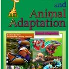 Plant and Animal Adaptation PowerPoint Presentation P.1          Cover  P. 2-4      Vocabulary P.5-9        Introduction P.10- 40   Plant Adaptatio...