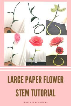 Make free standing paper flowers diy easily at saving cost with these large flower stem tutorials! They are awesome for your paper flowers crafts. #freestandingpaperflowers #largefreestandingflowers #freestandingflowersdiy #freestandingpaperflowersdiy #largepaperflowerstem #largeflowerstand #freestandingflowers #largepaperflowers #makingpaperflowers #paperflowerscraft #paperflowerseasy Giant Paper Flowers, Paper Roses, Large Flowers, Easy Paper Flowers, Paper Flower Backdrop, Large Paper Flower Template, Flower Words, Flower Stands, Flower Wall Decor