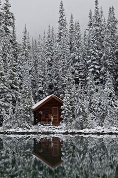 I want to sip coffee on THIS porch! YOHO NATIONAL PARK: Early Snow in the Canadian Rockies