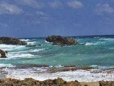 墨西哥探礁   PennyandWei