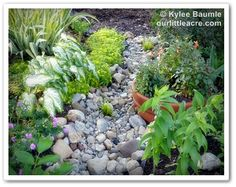 """Our Little Acre: """"Lowe's Creative Ideas: Summer Bulbs Dress Up a Dry Bed"""""""