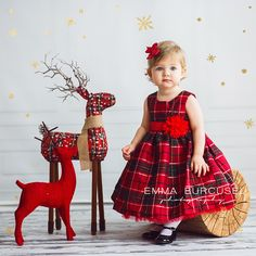 Christmas mini sessions ideas (8)