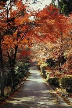 Japan.Atsuhiko Takagi