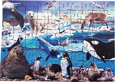 A #jigsaw exploring the #Arctic #wildlife in the form of #beautiful imagery. Comes complete with teachers notes. #education #wooden #madeinbritain #Educational #Business #familybusiness #Family #wooden #British #Handmade #Children #gifts #toys #Christmas #jigsaw #puzzles #children #parenting #parents #childhood #animals #wildlife #animalkingdom #sights #views #british #england #derby #madeinengland #madeinbritain