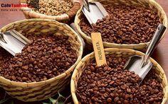 Grinding Coffee Beans Gives Chance to Have Fresh Coffee - CoffeeLoverGuide Grinding Coffee Beans, Types Of Coffee Beans, Buy Coffee Beans, Tostadas, Barista, Brazil Coffee, Fair Trade Coffee, Coffee Type, Coffee Coffee