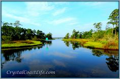 Blue water cove off the White Oak River, NC. Crystal Coast Life: Summer in the Cove