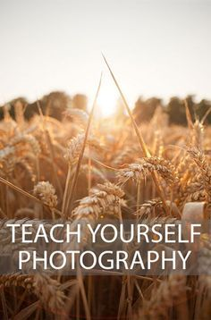 Fancy teaching yourself photography? If So This Article Is For You. #photography #tutorials