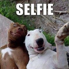 (Let's go for a walk together) But first, let me take a selfie