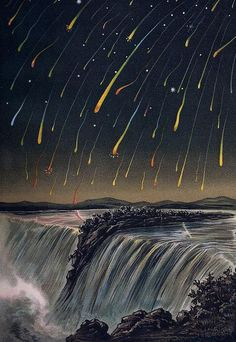 FLOWERS OF THE SKY Leonid Meteor Storm, as seen over North America on the night of November 12-13, 1833. from E. Weiß's Bilderatlas der Sternenwelt (1888)