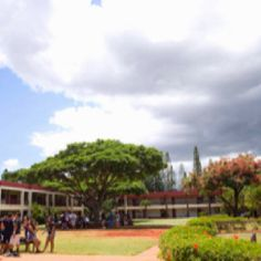 Mililani High School where I went to 9th and 10th grade...my geeky high school years, lol