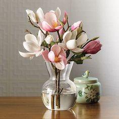 Still Life Photography Flower Vases, Flower Art, Pink Flowers, Beautiful Flowers, Nature Photography Flowers, Flowers Nature, Paint Photography, Life Photography, Japanese Magnolia