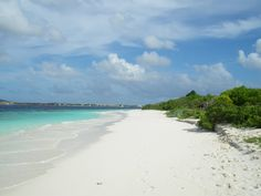 Klein Bonaire- no name beach is the best beach and clearest water! Tons of hermit crabs and ghost crabs everywhere! The kids loved it!