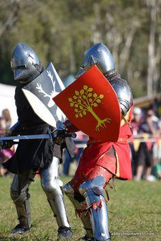 Shield idea. Abbey Medieval Festival Reenactment Kylie Shaw abbeytournament.com