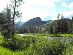 Near the Hoback River, Wyoming. Near Jackson Hole. (Photo by Gary Leikness)