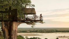 Romantic Tree House in Africa - Top 15 Pictures of Stunning Places