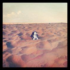 ¡Qué calorcito en el desierto!¿Quién dijo frío?