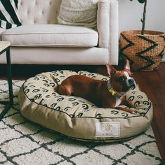 Fais do-do medium dog bed - See Scout Sleep - made in Louisiana USA. Pet products for those with a tendency to be awesome. Dog Sofa Bed, Dog Beds, Comfy Dog Bed, Elevated Dog Bed, Dog Milk, Pet Style, Unique Animals, Cat Design, Pet Accessories