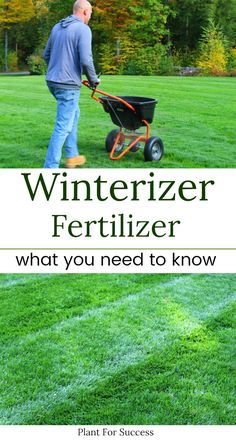 Did you know that you don't need to buy a fertilizer that's labeled as Winterizer? Your last fertilizer application is an important part of your lawncare program. There's a lot of false information out there regarding the last lawn treatment of the season. Follow this guide to learn what fertilizer you should apply late in the season to over winter your lawn and have a green lawn in early spring. Diy Garden Bed, Lawn And Garden, Growing Plants, Growing Vegetables, Overwintering, Cold Frame, Green Lawn, Lawn Care, Gardening