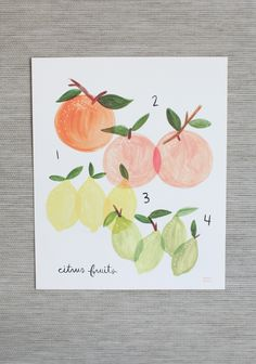Citrus Art Print By Rifle Paper Co. #ShopRuche shopruche.com/citrus-art-print-by-rifle-paper-co.html?utm_source=fb_wall_medium=sm_content=citrusartprint_campaign=fb_product #kitchenart