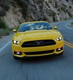 le jury a élu la Ford Mustang ''Meilleur coupé de l'année' et la Focus ST ''Voiture à hayon la plus performante''. La Ford Mustang a également reçu le...