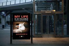 Murdoch Mysteries, Locker Storage, My Life, Presentation, Veganism