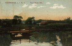 Aquebogue, Long Island, New York.  Terry Tuttle born there March 7, 1790.