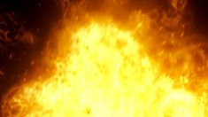 114 Dynamic gold raging fire photography&video background video material for video producer