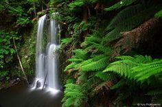 Waterfalls :: Beauchamp Falls