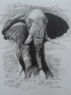 Elephant by Janice Kellerer