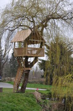 tree fort images - Google Search