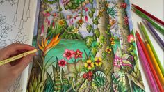 Magical Jungle: Tropical Paradise - Part 2 | Adult Coloring Book by Joha...