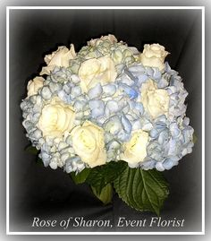 Hand-tied bouquet: blue hydrangeas and white roses. #RoseOfSharon