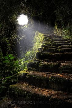 Stairway to Heaven. Passage on the Inca Trail leading to Machu Picchu, Peru. Beautiful World, Beautiful Places, Beautiful Stairs, Beautiful Beautiful, Beautiful Scenery, Amazing Places, Inca, Stairway To Heaven, Fantasy Landscape