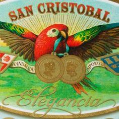 San Cristobal Elegancia Grandioso Logo