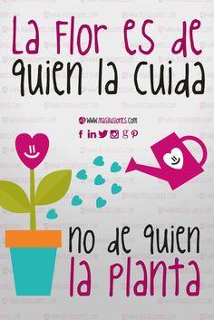 La flor es de quien la cuida no de quien la planta... #masilusiones  https://www.facebook.com/MasIlusiones/  www.masilusiones.com