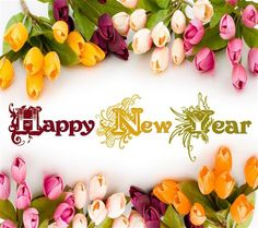 new year 2015 pics - Google Search